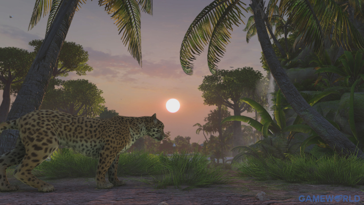 zoo tycoon ultimate animal collection 2