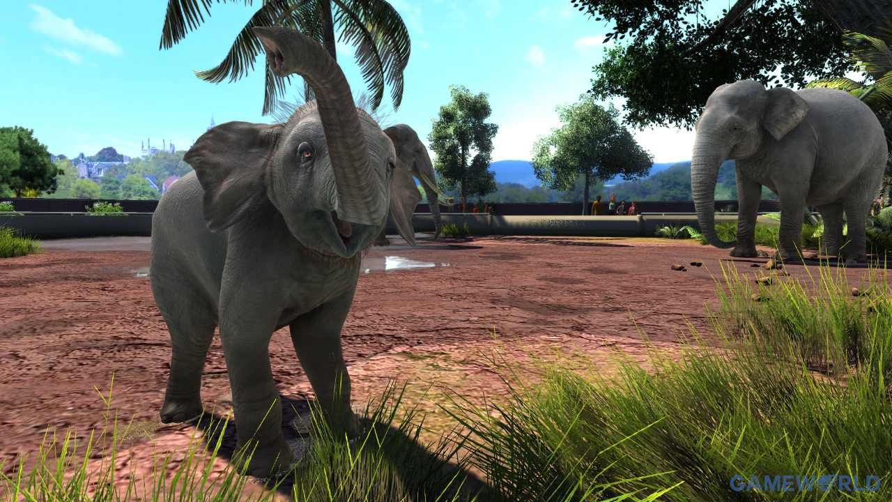 zoo tycoon ultimate animal collection 3