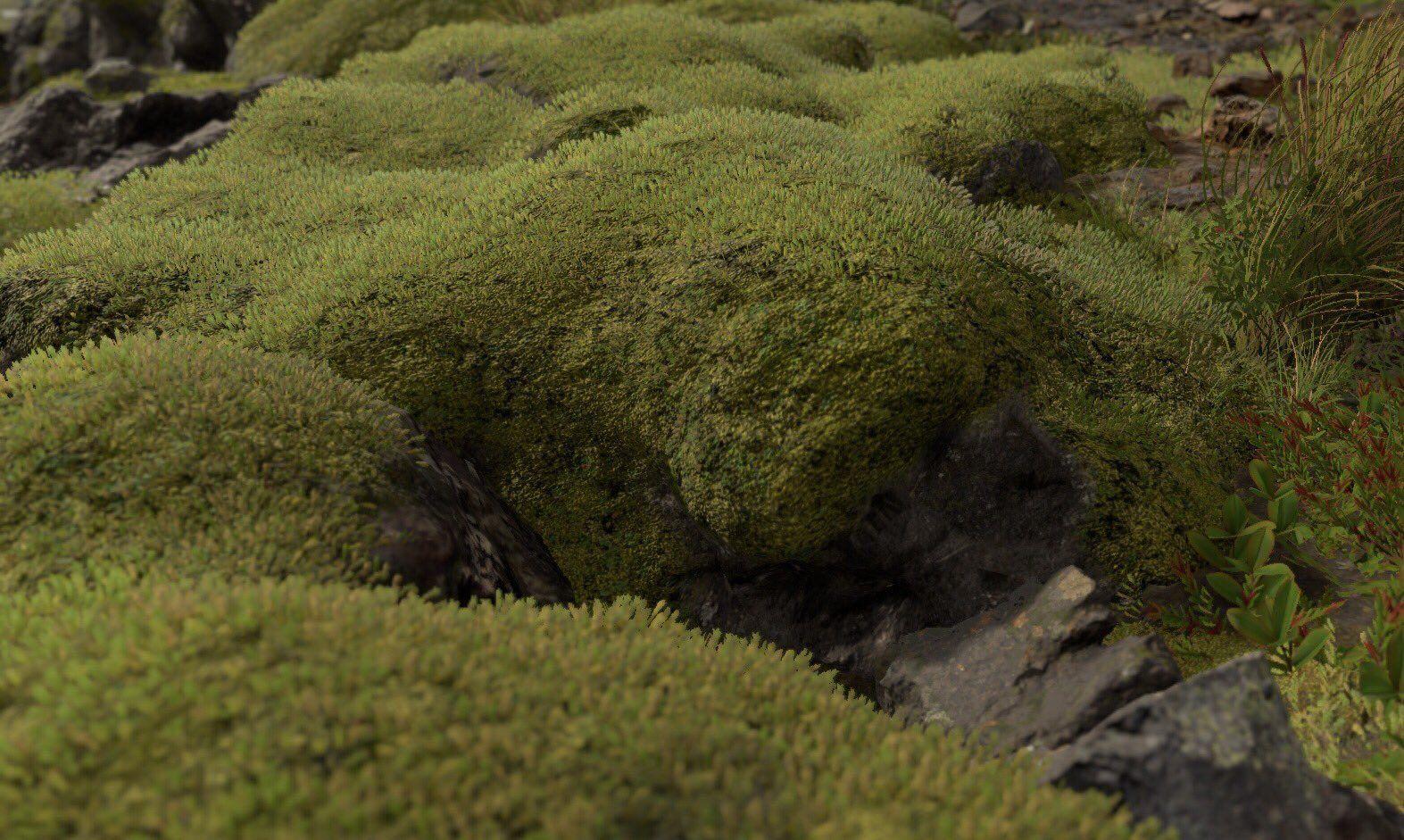 /home/gameworl/public_html/media/kunena/attachments/3/death-stranding-moss.jpg