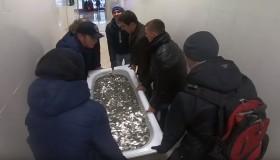 Ρώσος YouTuber πήρε iPhone XS δίνοντας μια μπανιέρα με κέρματα