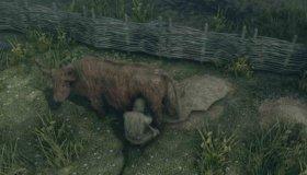 Αρμέξτε αγελάδες και κατσίκες στο Skyrim